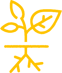 icon01